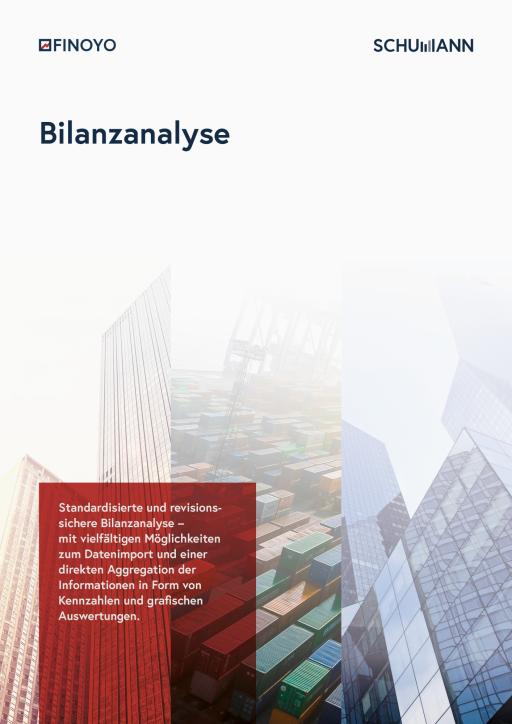 FINOYO Bilanzanalyse software