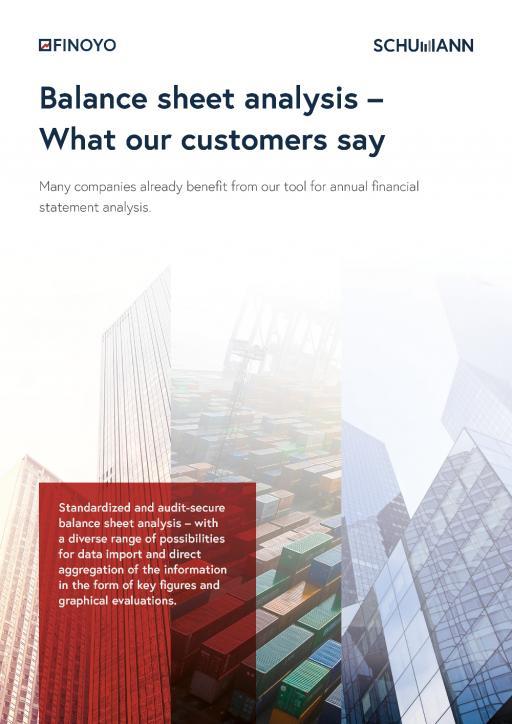 FINOYO customer financial statement analysis2