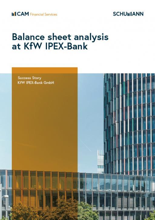 Kf W Balance sheet analysis tool