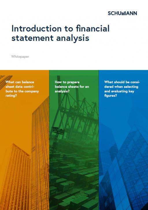 Whitepaper financial statement analysis