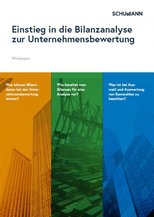 Whitepaper: Einstieg in die Bilanzanalyse zur Unternehmensbewertung